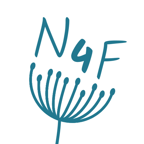 nouvelles4faith.com
